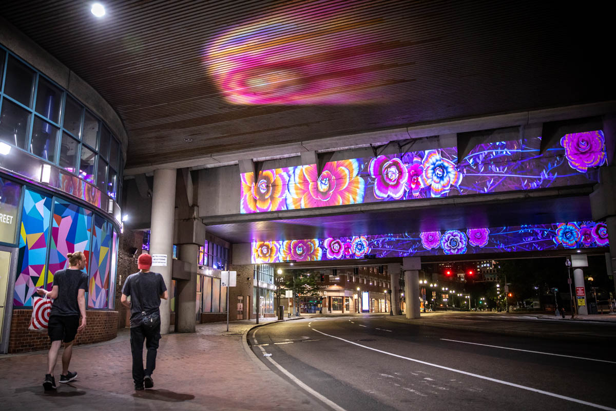 Projector Bulfinch Underpass